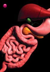 Gastrointestinal Anatomy and Physiology, The Essentials - Simon, Douglas, Reinus, John F.pdf