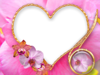 Molduras floridas (8).png
